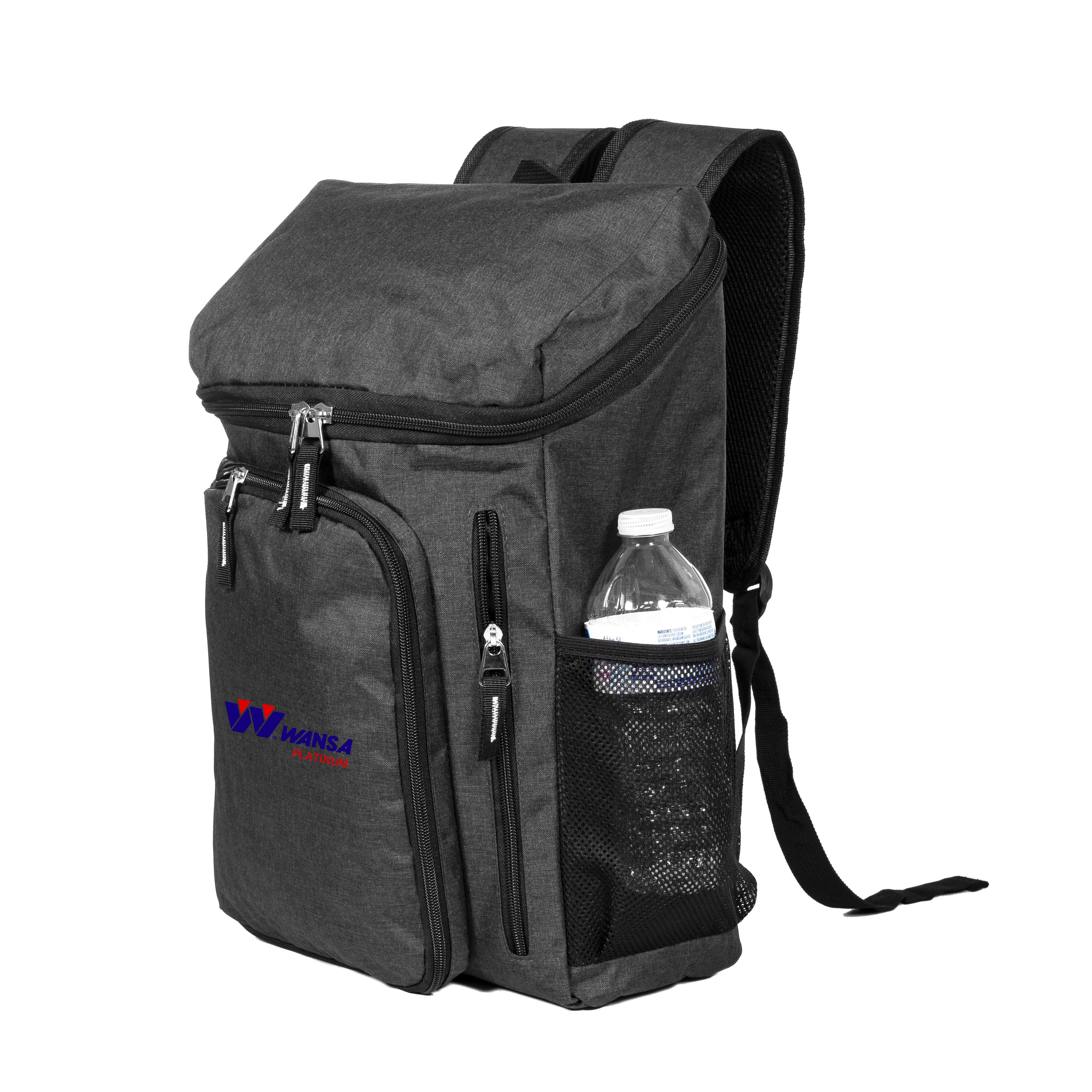 ASPEN DELUXE COMPUTER BACKPACK